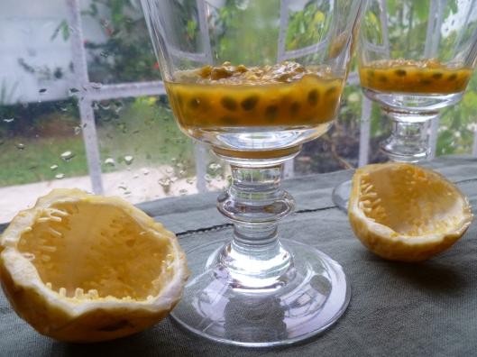 Pasion fruit Kiwi verrines and a mango 011