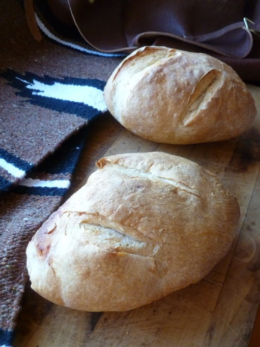 rustic european bread all 081
